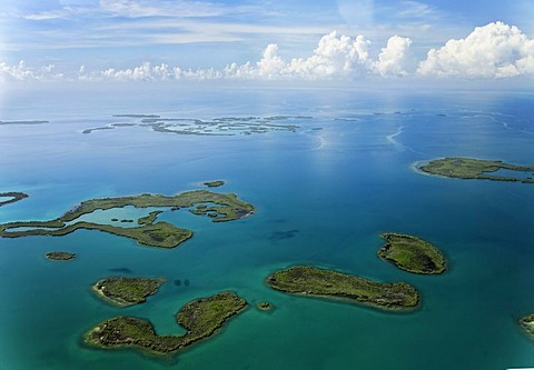 Mangroves in the ocean, aerial picture, coast between Dagria and Punta Gorda, Belize, Central America, Caribbean