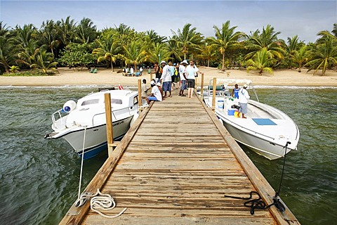 Wharf with diving boats and scuba divers in front of a beach with palm trees, Hamanasi Hotel, Hopkins, Dangria, Belize, Central America, Caribbean