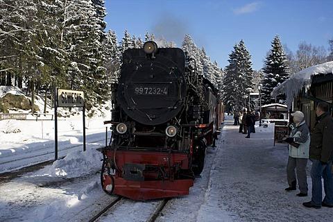 Harzer Schmalspurbahn, narrow-gauge railway with steam engine, Saxony-Anhalt, Germany