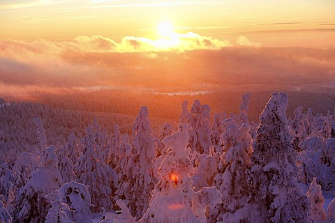 View from the Brocken mountain over a winter landscape deeply covered in snow, sunset, Saxony-Anhalt, Germany