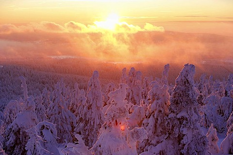 View from the Brocken mountain over a winter landscape deeply covered in snow, sunset, Saxony-Anhalt, Germany - 832-266562