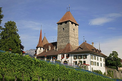 Spiez Castle in Spitz by Lake Thun, Niedersimmental, canton of Berne, Switzerland, Europe