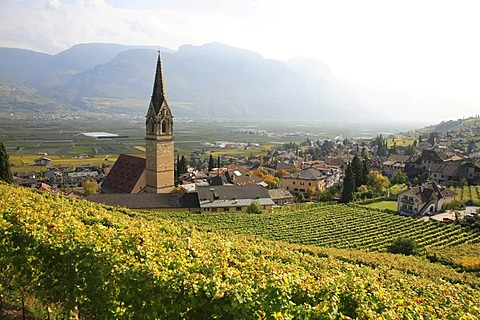 Tramin with parish church, South Tyrol, Italy, Europe