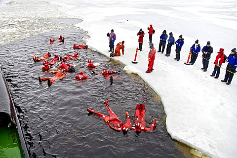 People swimming in the polar sea, Kemi, Lapland, Finland, Europe