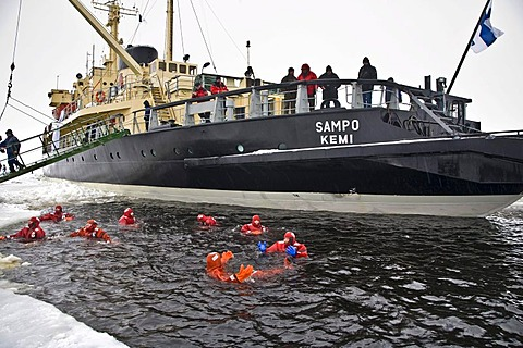 People swimming in the polar sea, Sampo icebreaker, Kemi, Lapland, Finland, Europe