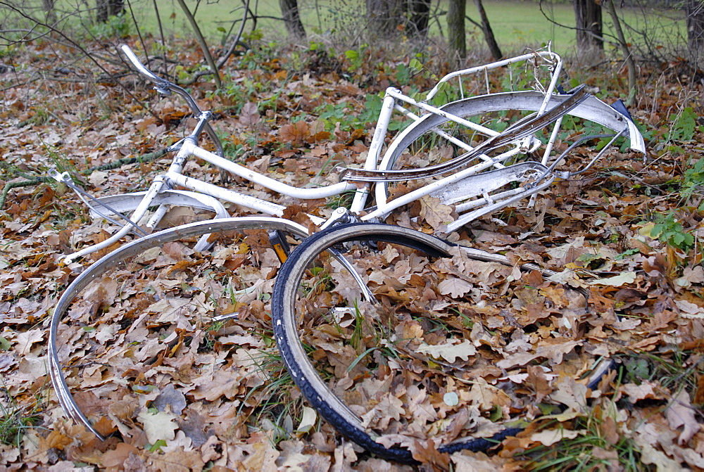 Junk bicycle left in a forest