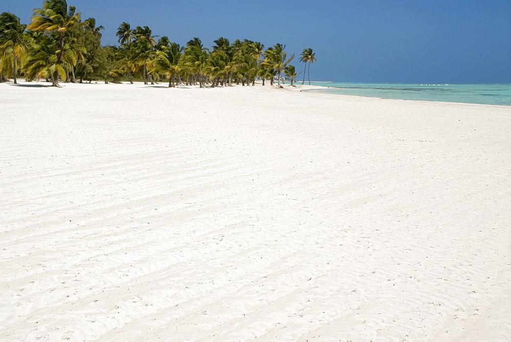 Palm beach, Punta Cana, Dominican Republic, Caribbean