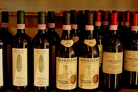 Vine wine shop enotek