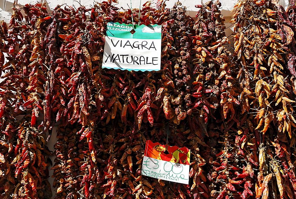 Cayenne pepper dryed Amalfi coast Campania Italy Italia chili