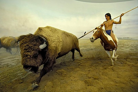 Hunting native American and Bison buffalo, Ueberseemuseum Bremen, Germany