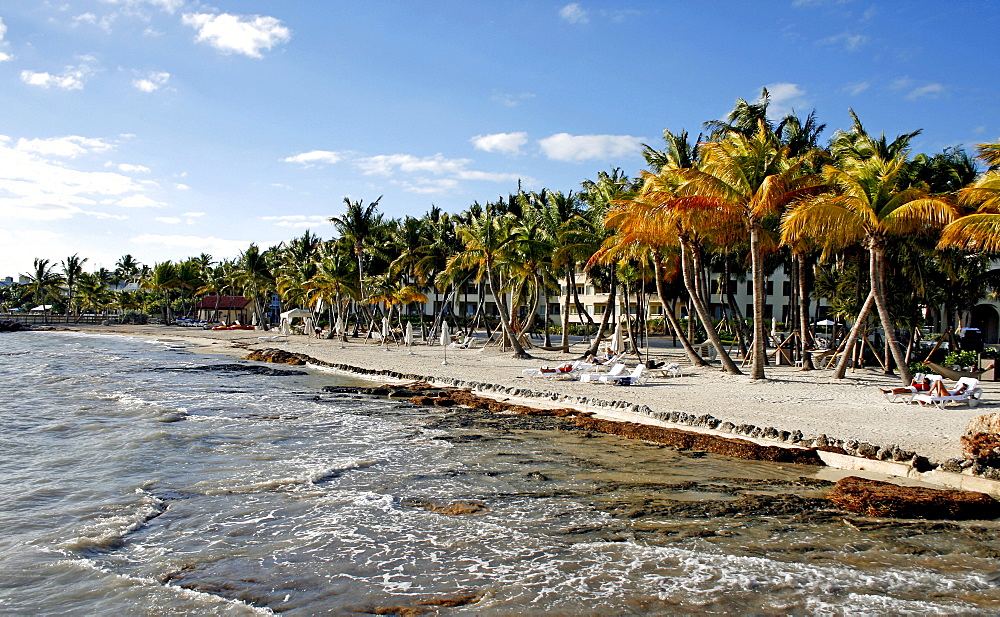 Beach, Key West, Florida, USA