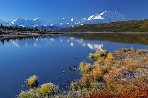 Autumn in Denali National Park Mount McKinley is mirrored in Wonderlake , Alaska , USA