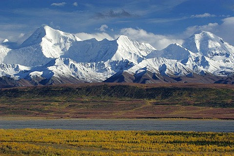 Autumn in Denali Nationalpark Alaska USA