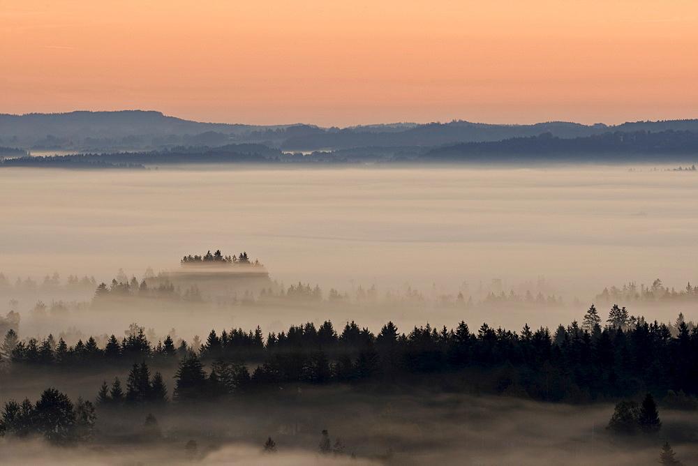 Landscape enshrouded in mist, Bavarian pre-Alps, Upper Bavaria, Bavaria, Germany, Europe