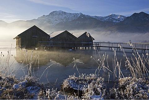Boathouses, frost-covered reeds on the shore of the Kochelsee (Lake Kochel) enshrouded in mist, Bavarian pre-Alps, Upper Bavaria, Bavaria, Germany, Europe
