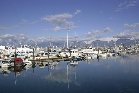 The small boat harbour at the Homer Spit Kenai peninsula Homer Alaska USA