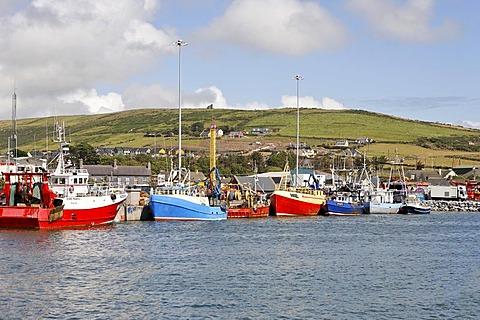 Fishing boats, Dingle, Kerry, Ireland - 832-284497