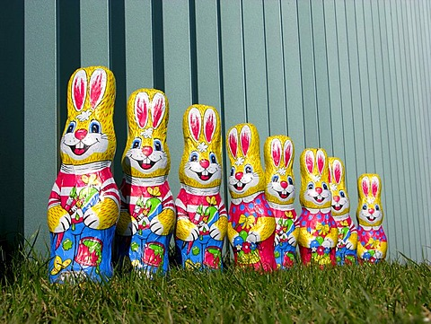 Eight easter bunnies from chocolate stand one behind the other before a fence made of metal on a juicy green meadow, Office of the Federal Chancellor, Berlin, Germany, Europe