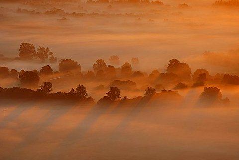 Aerial photograph, Mueritz National Park, sunrise, early morning fog, Mecklenburg Lake District, Rechlin, Mecklenburg-Western Pomerania, Germany, Europe
