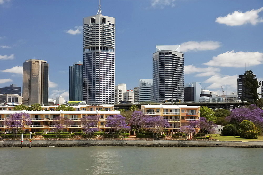 Skyline of Kangaroo Point, Brisbane, Queenlsand, Australia