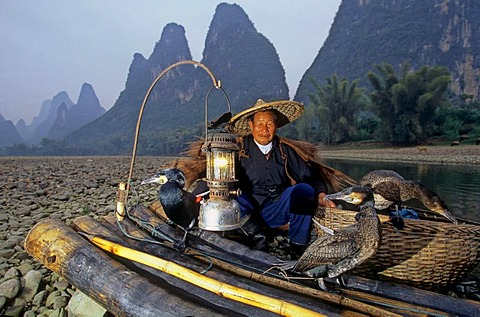 Typical fisherman with cormorants, Xingping, Guangxi, China, Asia