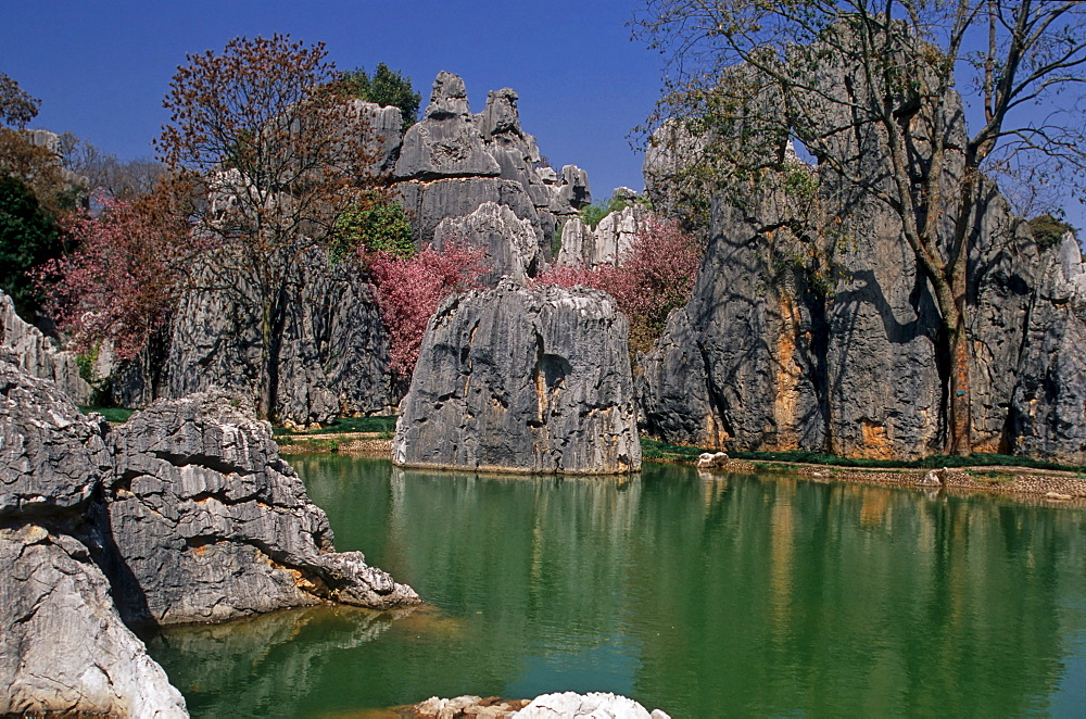Shilin Hu Lake, stone forest, Kunming, Yunnan, China, Asia