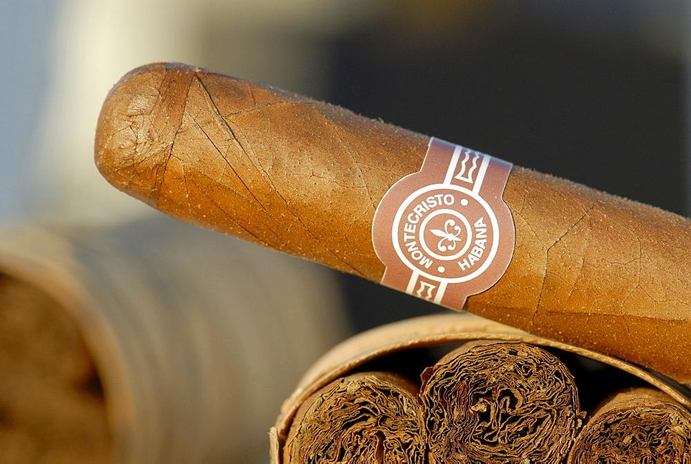 Montecristo Cigar, Pinar del Rio, Vinales, Cuba, Caribbean - 832-290021