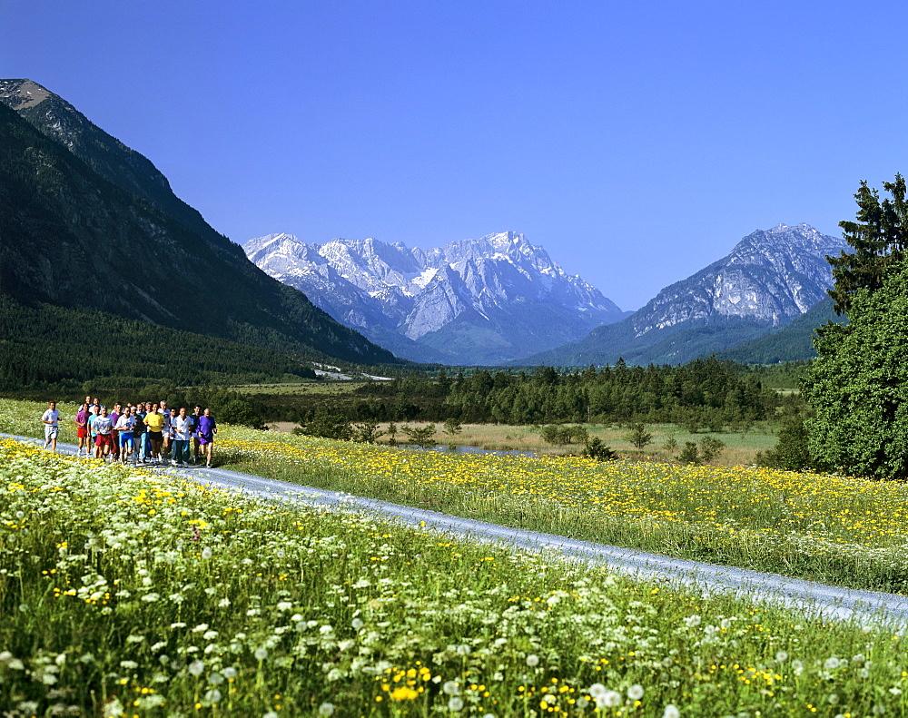 Joggers in field lane, flower meadow in springtime, mountain landscape near Eschenlohe, Upper Bavaria, Bavaria, Germany, Europe