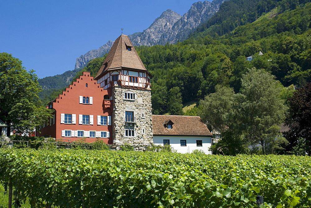 Red House, Vaduz, Liechtenstein