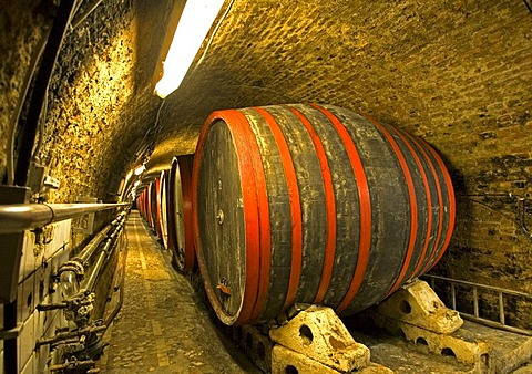 Villany, 9000 l wine cask in the biggest wine cellar of Villany, Pecs, Southungary, Ungary, Southeast Europe, Europe,