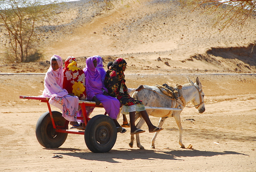 Women on donkey cart, Meroe, Sudan