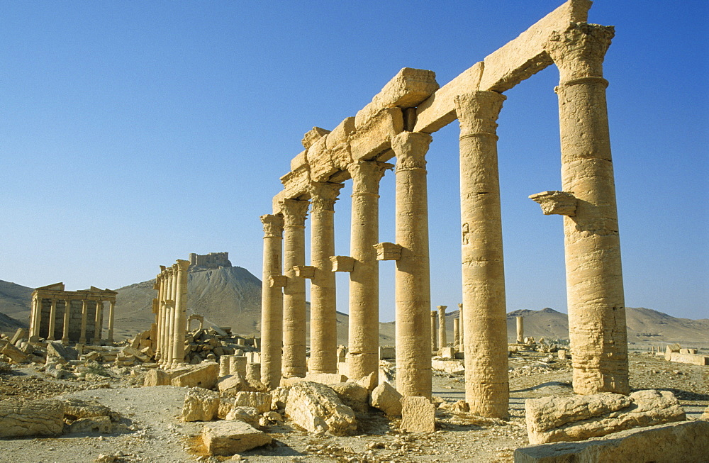 Ancient columns, Palmyra, Syria, Middle East