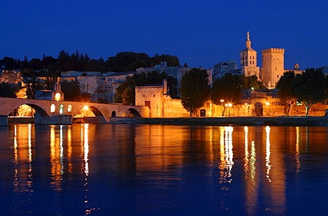 Papal Palace at Rhone River in Avignon, Provence, France