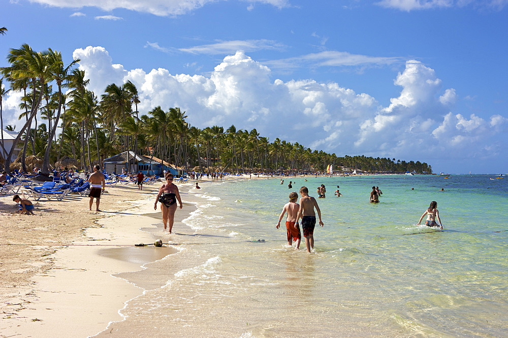 Tourists on a beach lined with palm trees, Punta Cana, Dominican Republic, Caribbean
