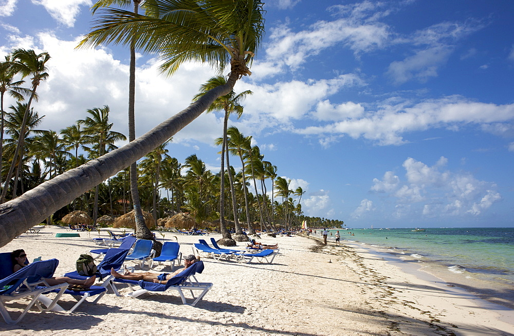 Tourists at a palm-lined beach, Punta Cana, Dominican Republic, Caribbean