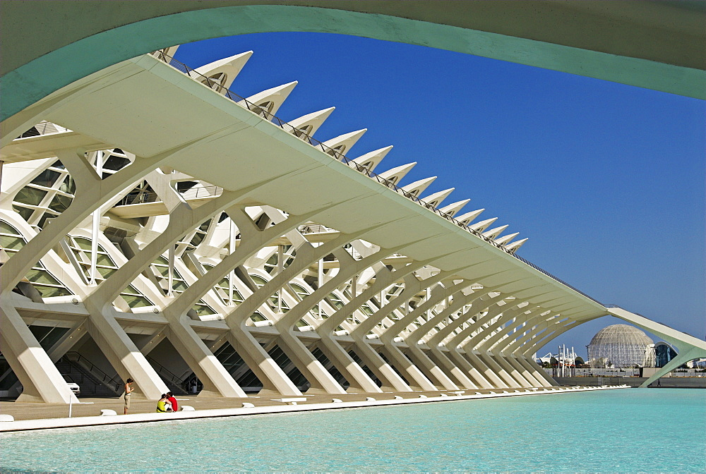 Science Museum of Principe Felipe in the City of Arts and Sciences, City of Valencia, Spain, Europe