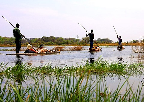Tourists on trip in a Mokoro canoe in the Okavango Delta, Botswana