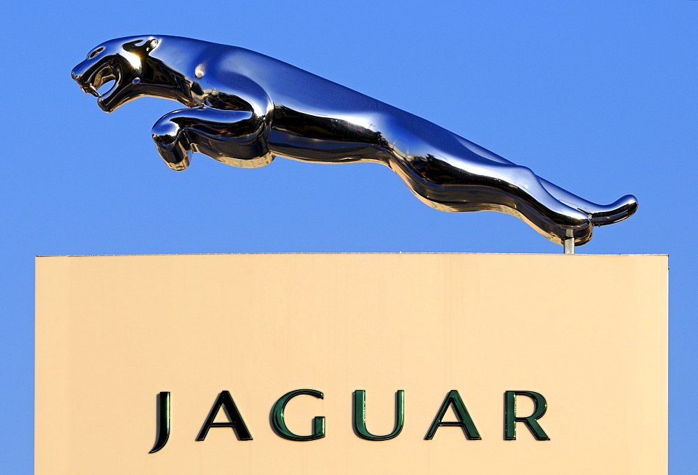 Leaping cat of prey, trademark of the Jaguar car manufacturer - 832-301929