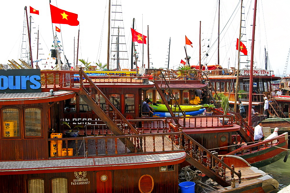 Traditional Vietnamese junks, boats in the port of Halong Bay, Vietnam, Southeast Asia