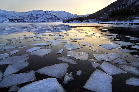 Ice floes on a lake