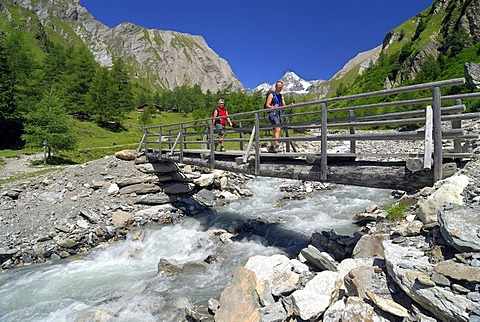 Hikers crossing a wooden bridge above a mountain stream, National Park Hohe Tauern, Tyrol, Austria