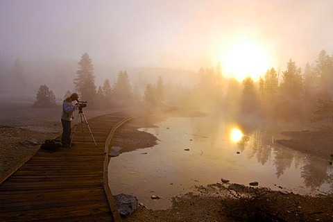 Morning fog, Yellowstone National Park, Wyoming, USA, United States of America