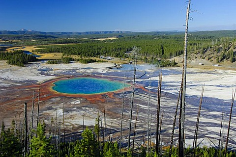 Grand Prismatic Spring, Yellowstone Nationalpark, Wyoming, USA, United States of America