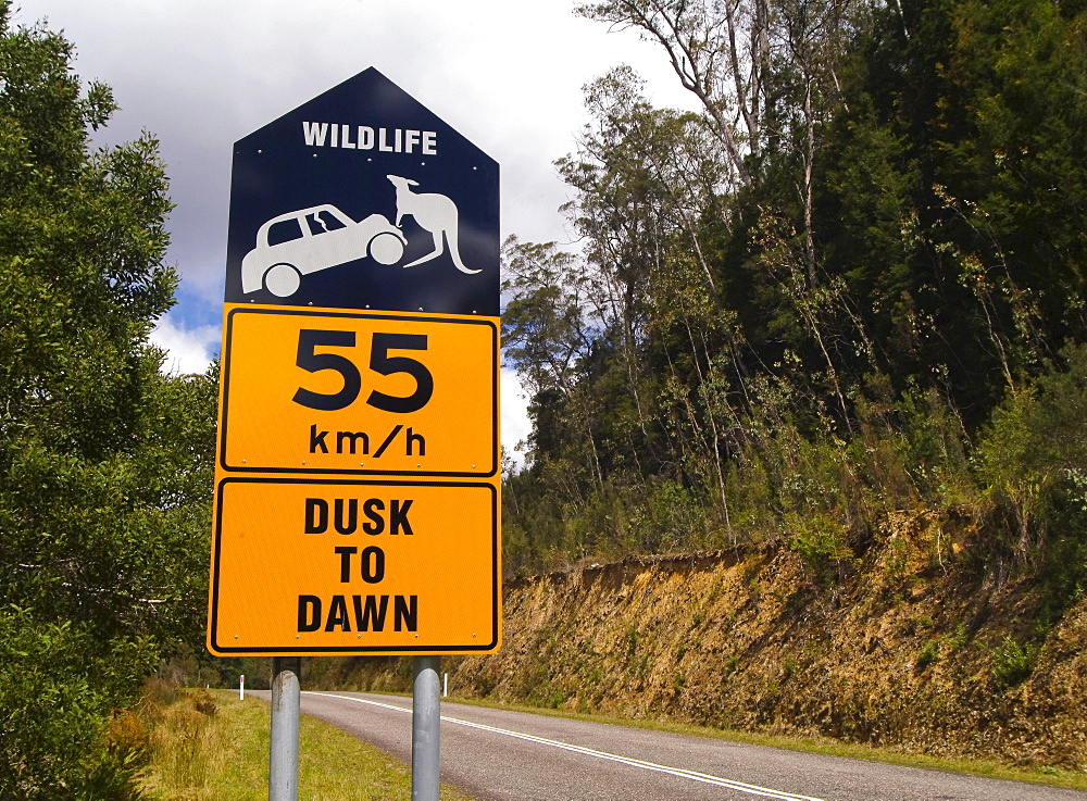 Wildlife crossing sign, dusk to dawn, Queensland, Australia