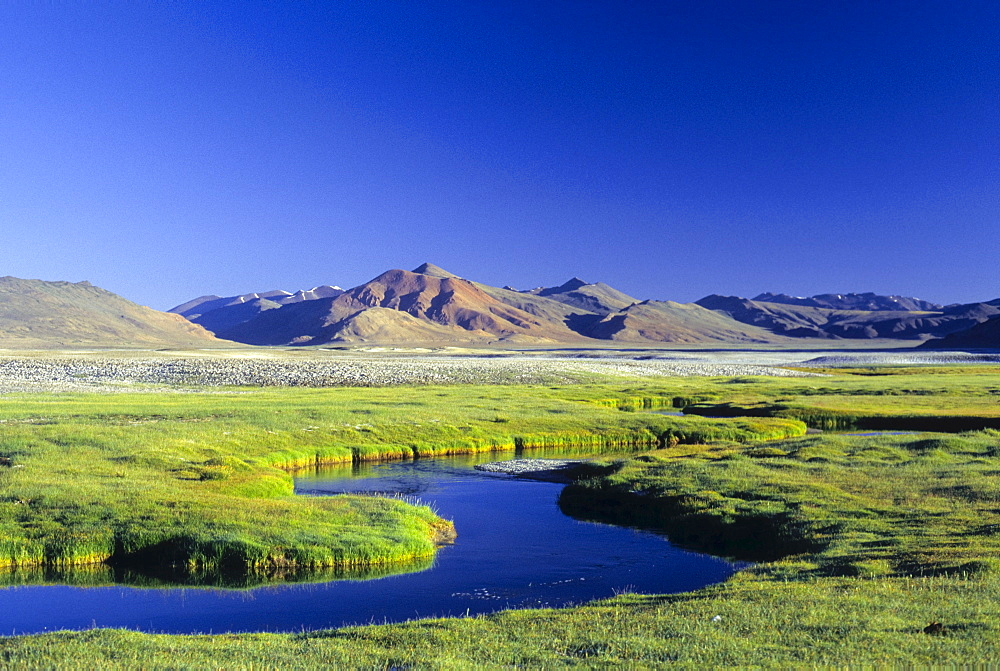 Meandering offshoot of Lake Kar Tso, grassy plateau and snow-covered peaks at over 4900 metres, Himalayas, Ladakh, India