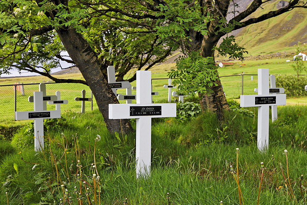 "Cemetery at an old heathen church (""Hof""), southern coast of Iceland, Atlantic Ocean"