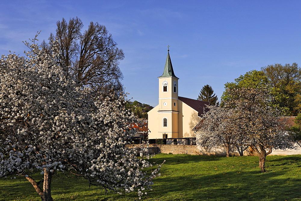 Church, Hernstein, Triesingtal (Triesing Valley), Lower Austria, Austria, Europe