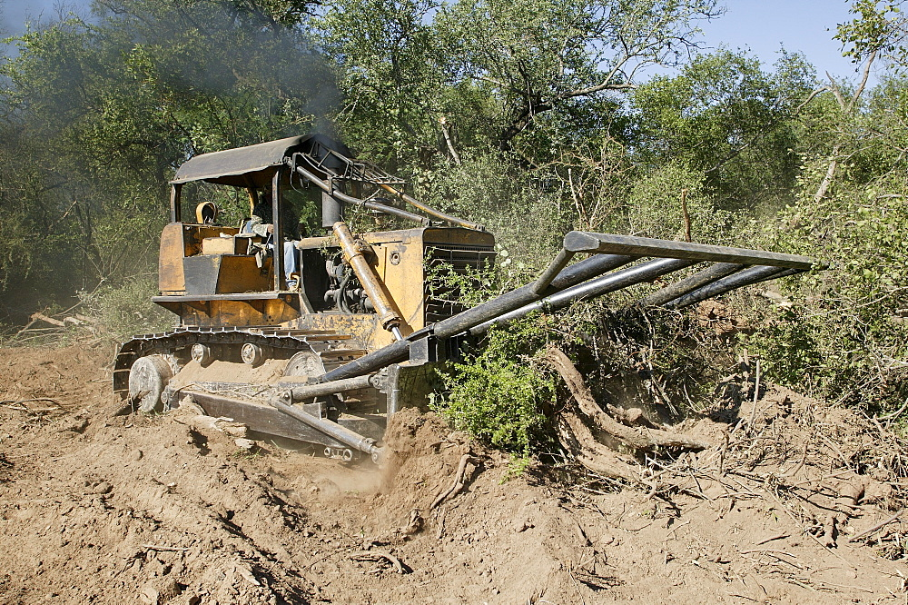 Dredger is clearing a forest to expand a road, Paraguay, South America