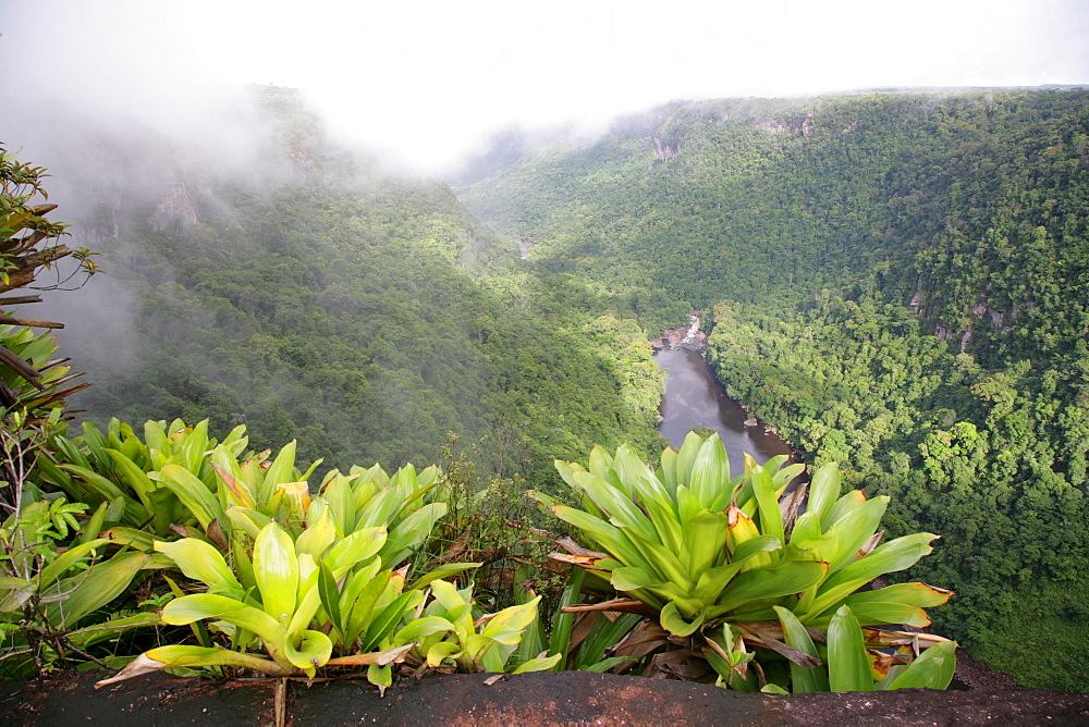 After tropical rains, Kaieteur Waterfalls, Potaro National Park, Guyana, South America