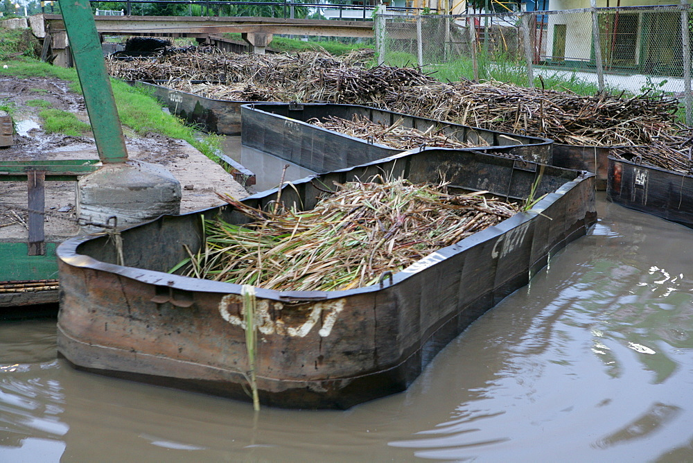 Barges used for the transportation of sugar cane, Demerara Province, Guyana, South America